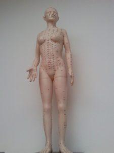 meridiánok, akupunktúra, hagyományos kínai orvoslás, HKO, meridián, akpresszúra