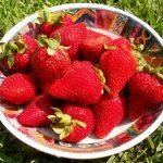 Flavonoidokkal a szívbetegségek ellen