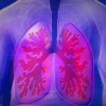 Mikrotápanyag-szinergia segíthet az asztmásoknak