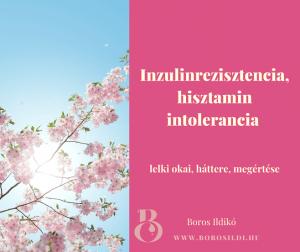 Inzulinrezisztencia, stresszkezelés
