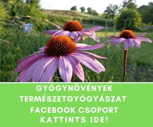 Gyógynövények természetgyógyászat Facebook Csoport