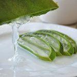 Aloe vera gyógyhatása és ellenjavallatai
