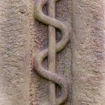 kígyó, gyógyszertár