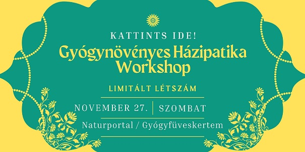 Gyógynövényes házipatika workshop